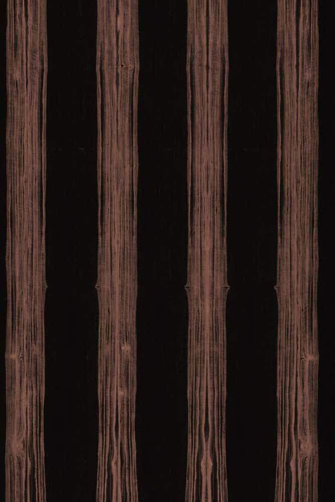 African ebony texture