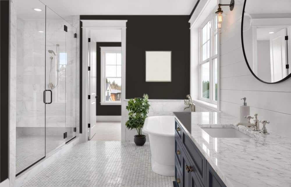 Black Master Bathroom Interior - Pantone 419