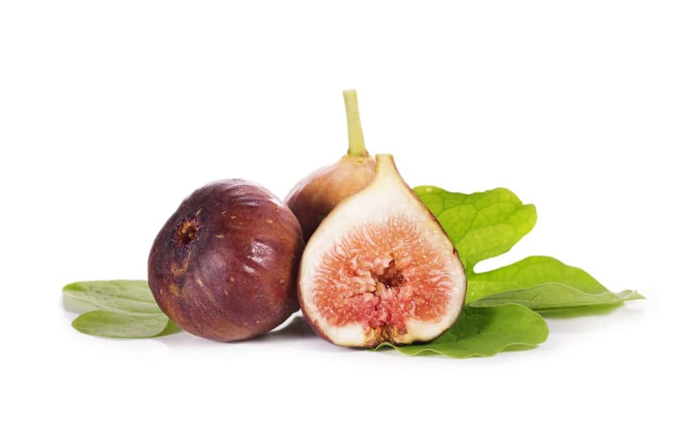 11 Different Types of Fig Trees
