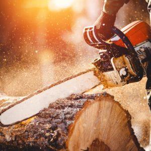 A chain saw cutting through a wood log.