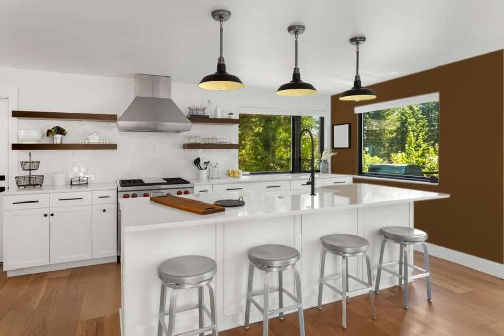 Brown Kitchen Interior - Pantone 161