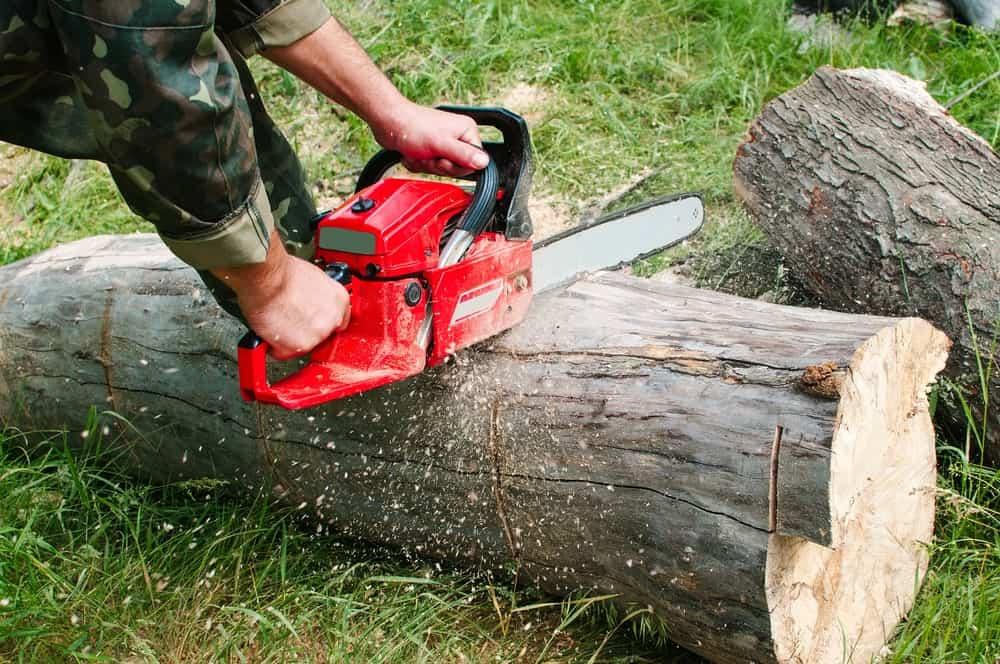 Manual chainsaw