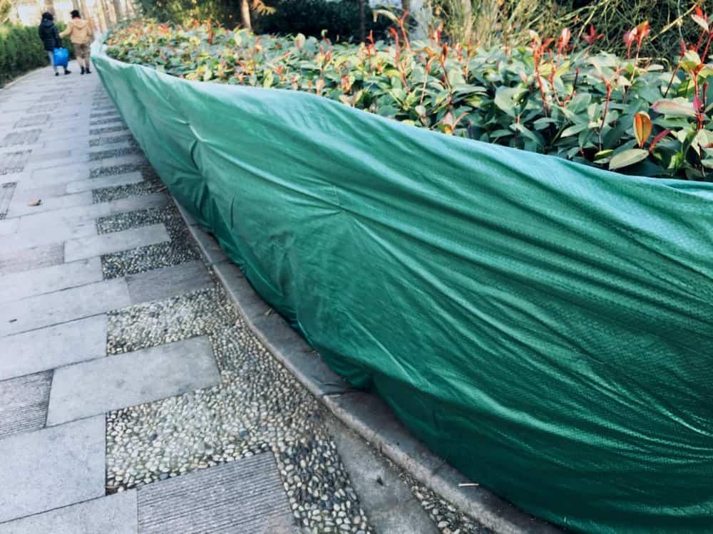 Green fence trap protecting a garden.