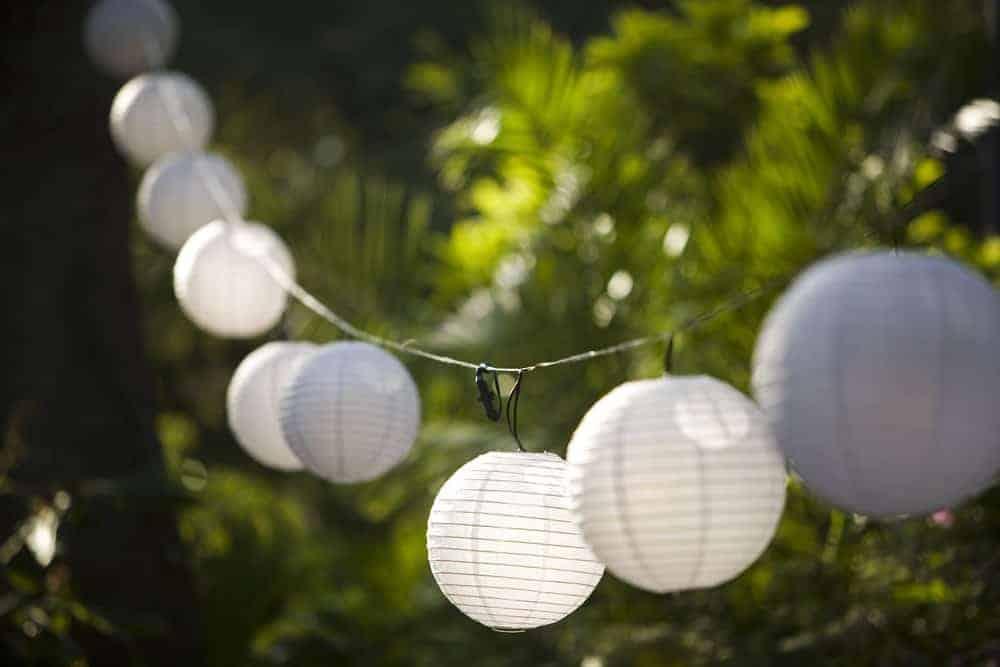 Globe lantern string lights hanging in a garden.
