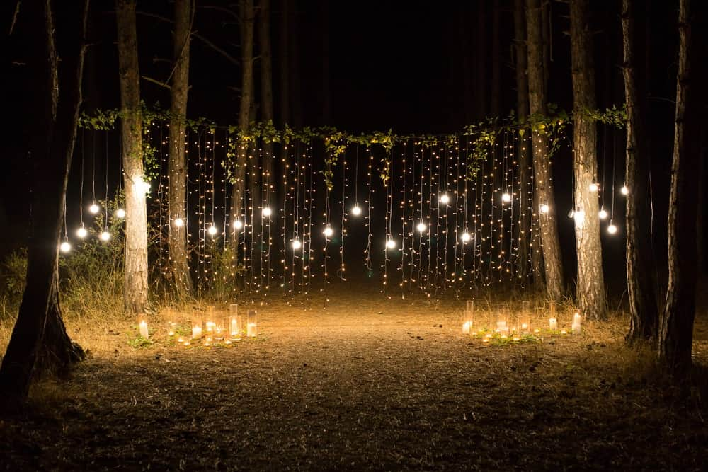 Romantic setup in the forest with candles and outdoor string lights.
