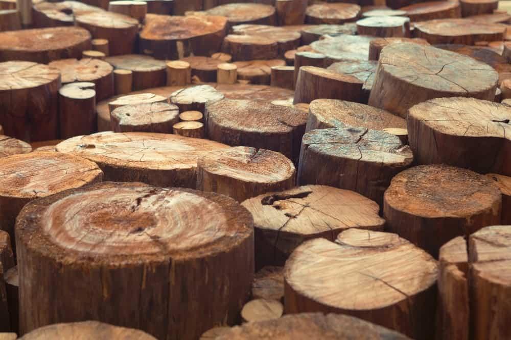 Indonesian Teak Wood