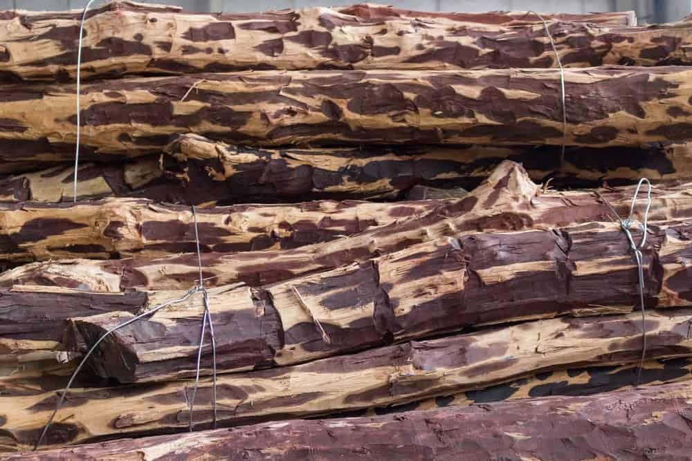 Stock of Tigerwood