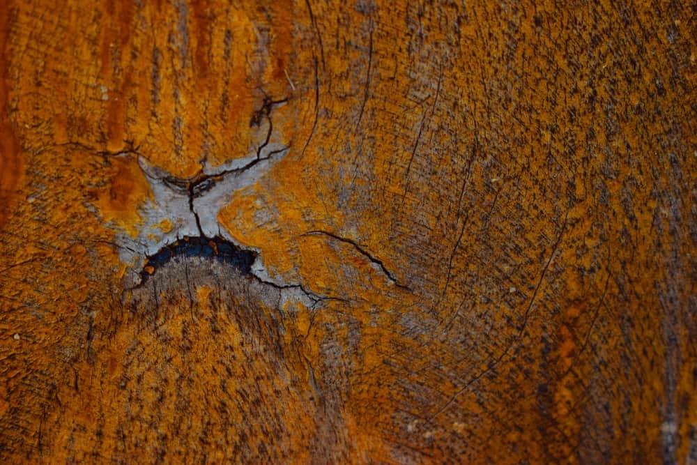 Closeup of Tigerwood texture