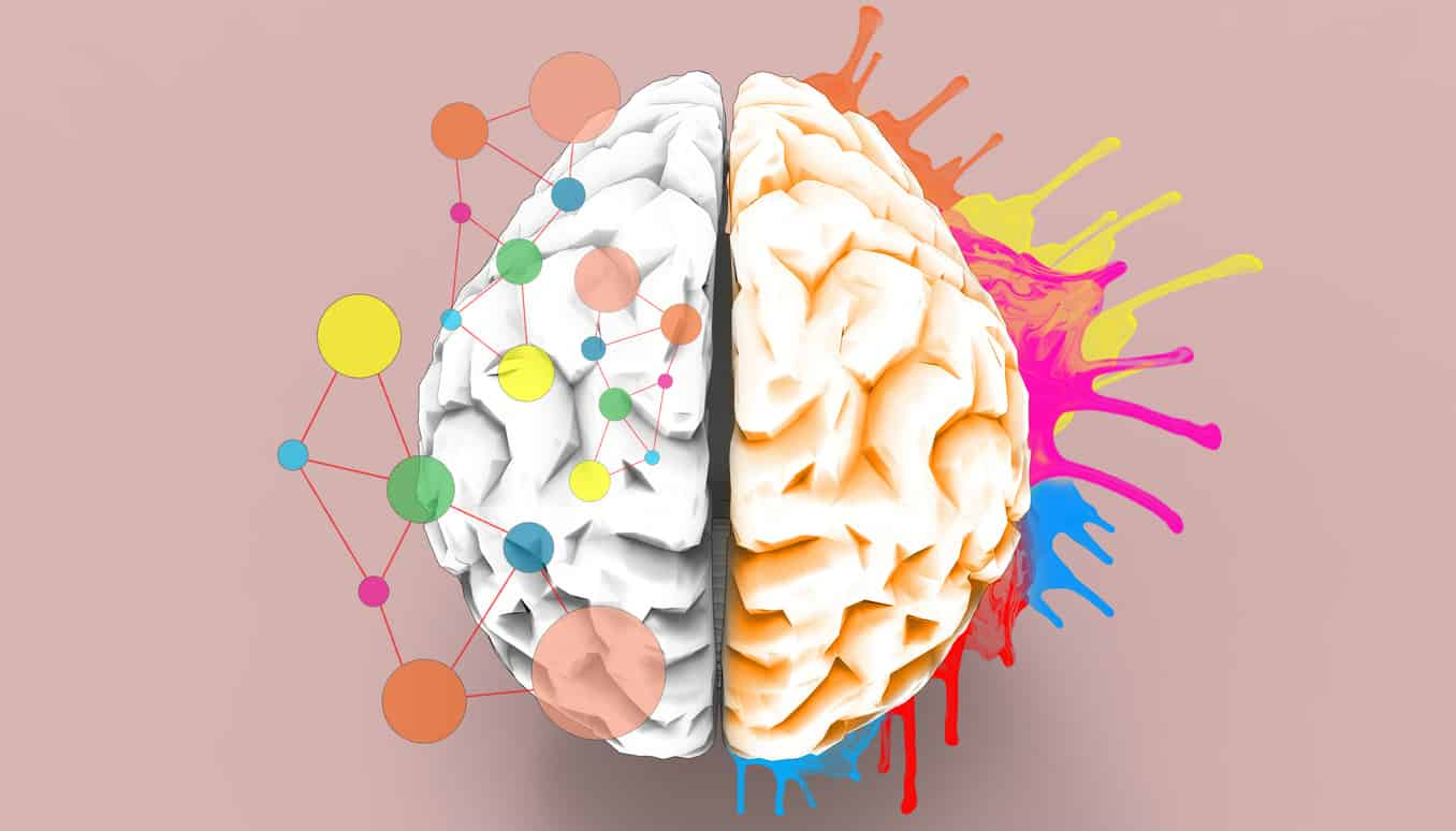 Brain left and right creativity functions