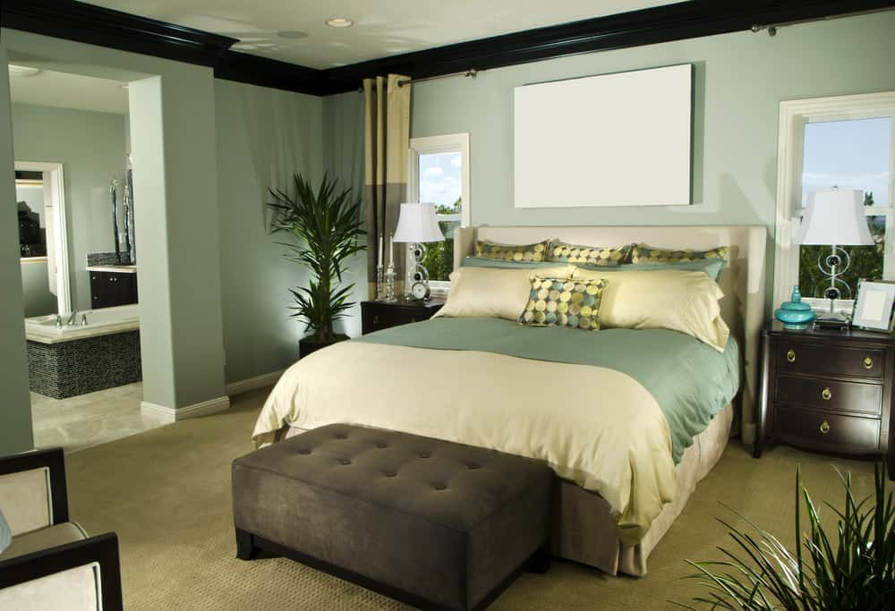 Green master bedroom featuring a black accent, carpet flooring and some indoor plants.