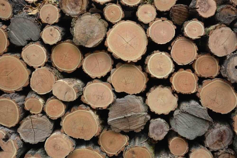 Stacked acacia wood logs.