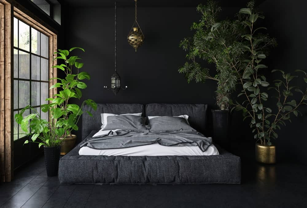 This primary bedroom offers a black large bed with potted green plants on the sides adding color to the black-themed room.