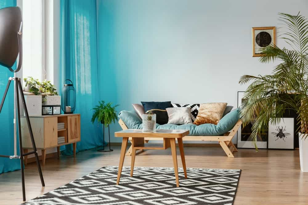 This living room features a wooden couch with a cushion along with throw pillows. There are indoor plants as well, adding color to the space.