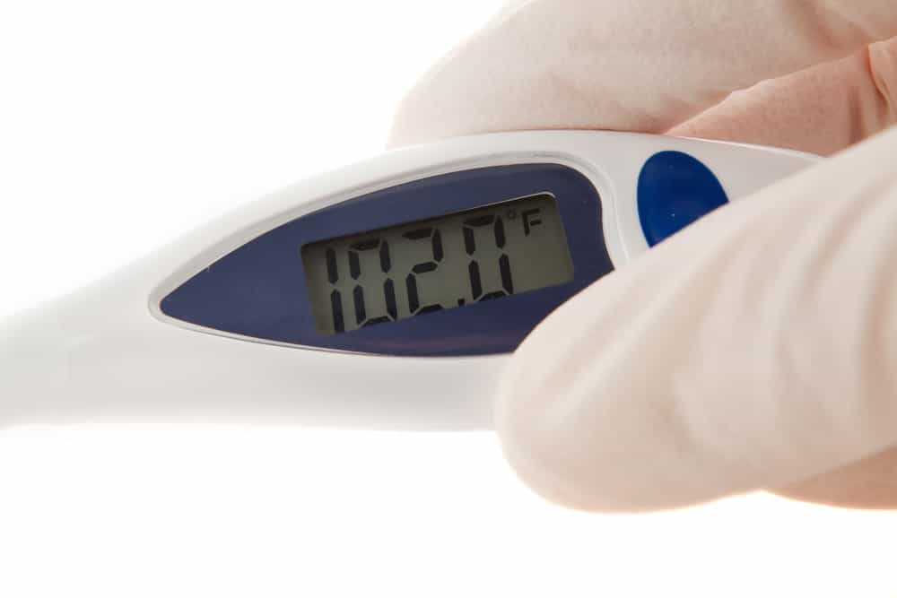 Latex gloved hands holding an instant read thermometer.