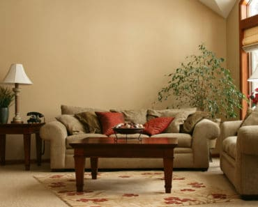 Living room with earth tone color scheme