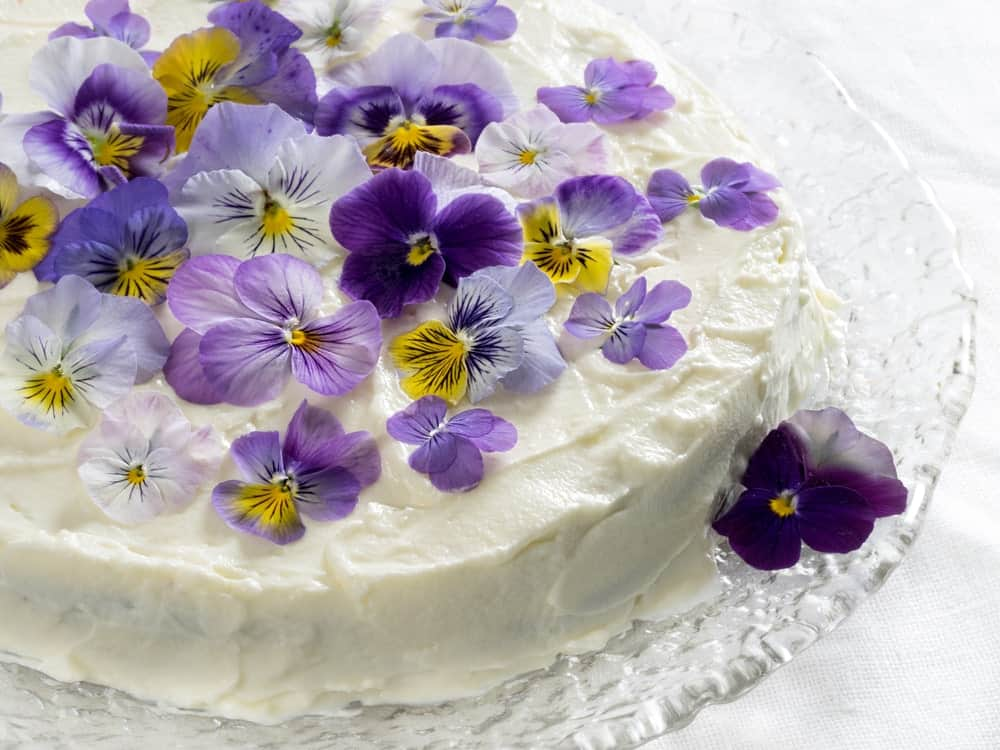 Carrot cake garnished with Pansies
