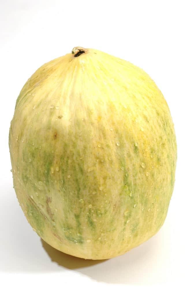Crenshaw melon, a hybrid of two cantaloupes