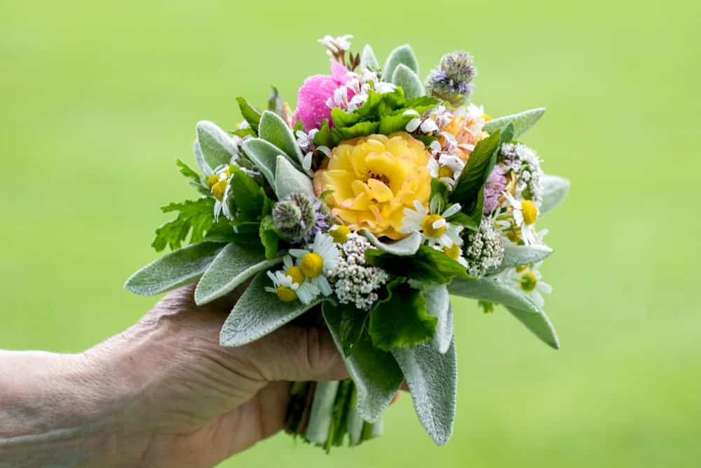 Small green bouquet