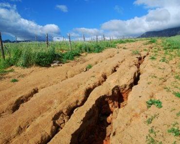 Soil with cracks