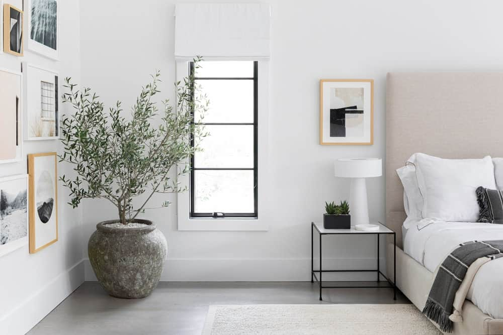 A focused look at the side of the master bedroom's bed, which features a small side table topped by a white table lamp along with a potted plant in the corner.