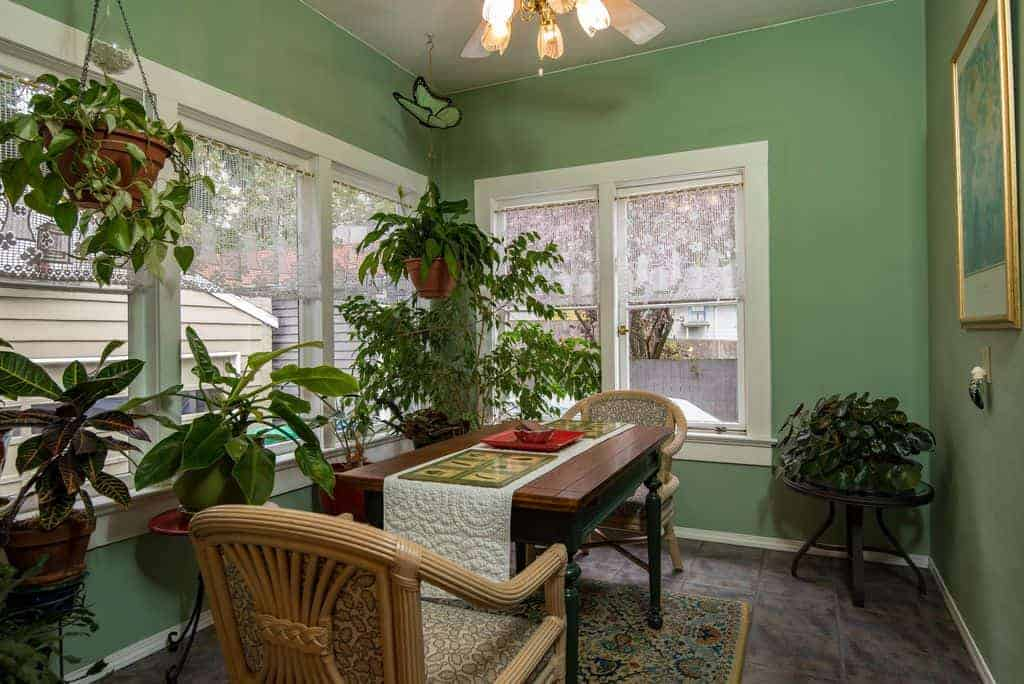 This simple dining room is filled with potted plants that are complemented by a pastel green wall for the background.