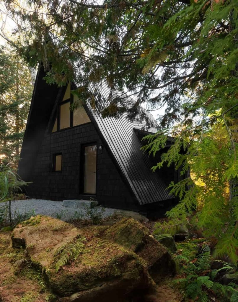 A black contemporary cabin set in the woods, surrounded by mature trees.