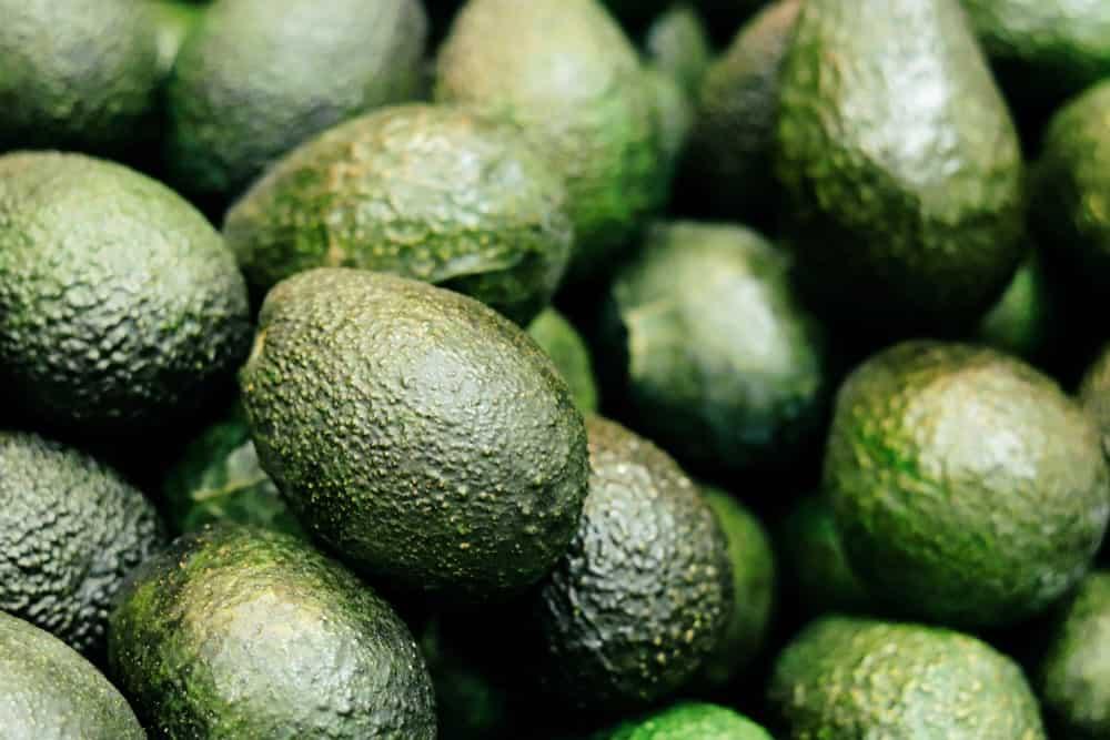 Unripe Avocados