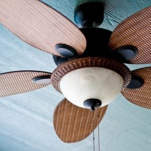 A Close-up of a Fan