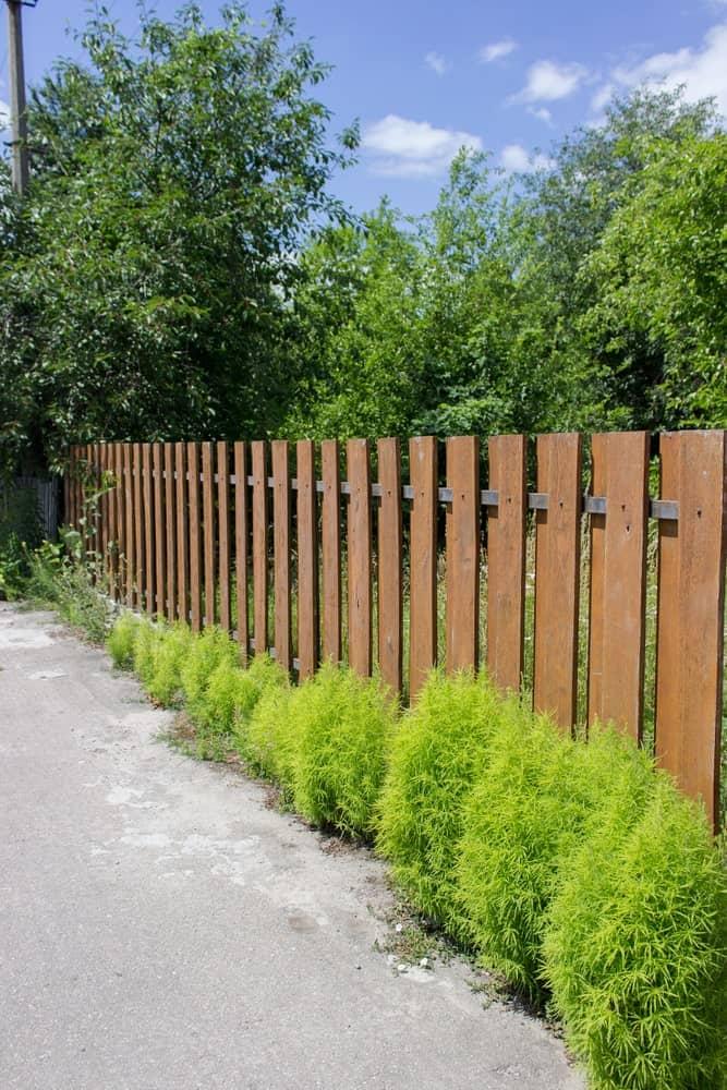 Wood Fence Color Ideas