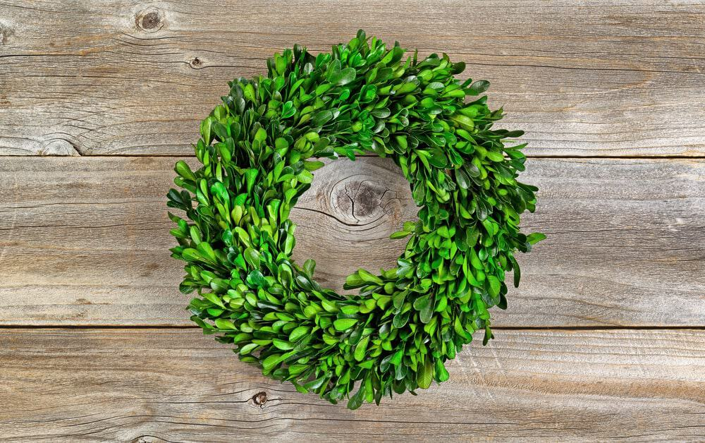 A Fresh and Lovely Boxwood Wreath
