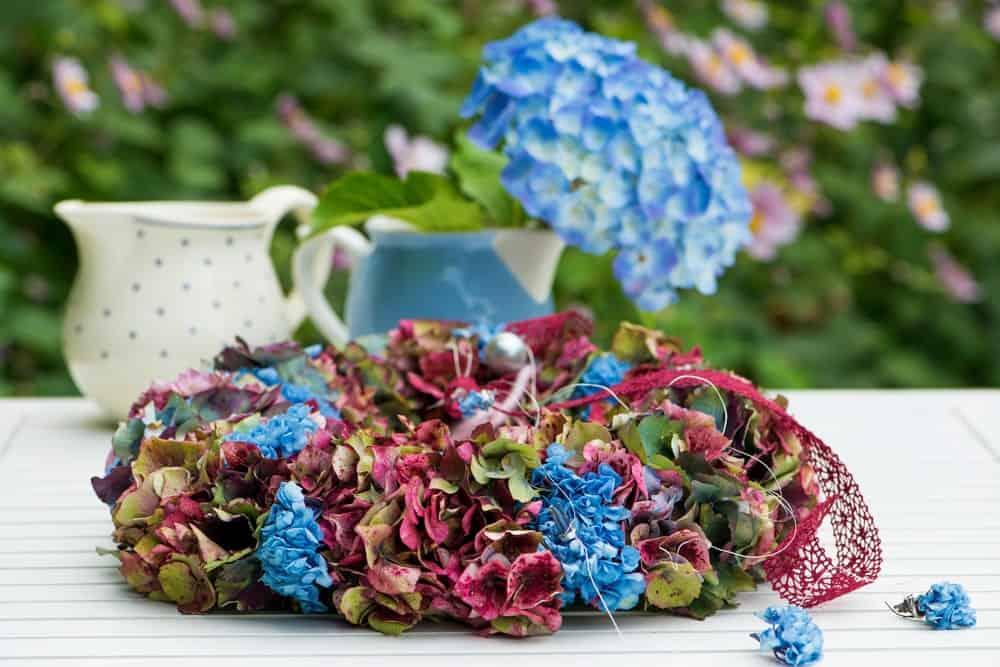 A Gorgeous Hydrangea Wreath