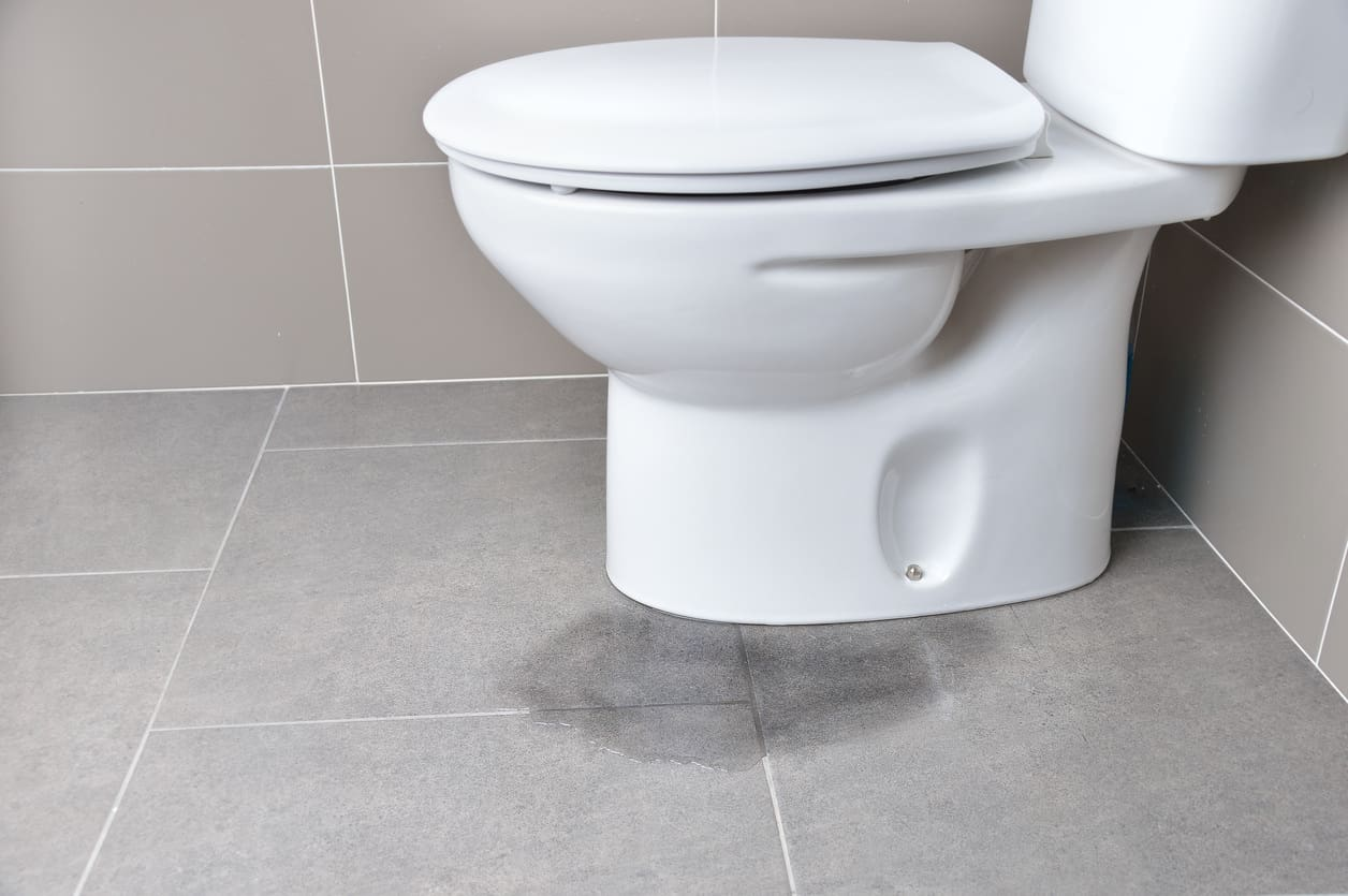 Leaking toilet