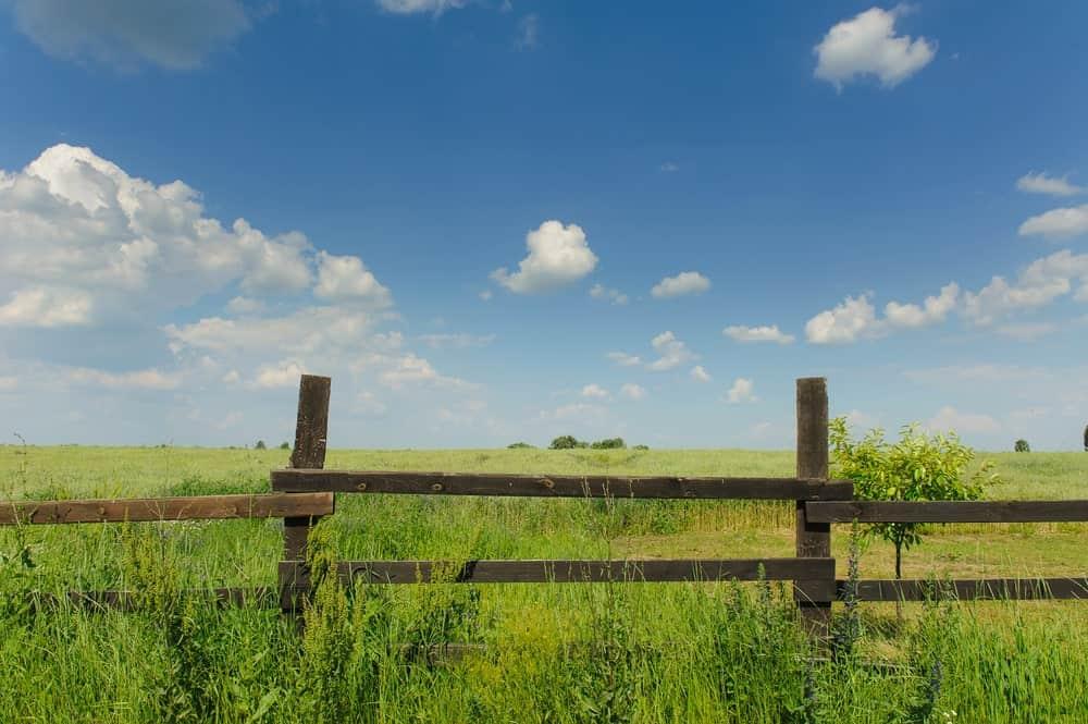 Wooden Slit Rail Fence across a Green Field