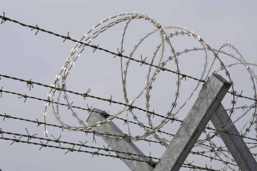 Welded razor wire being used