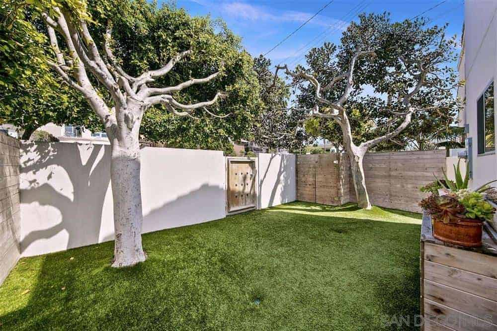 This beautiful and serene small backyard is fenced with wood on two sides and white on the wall opposite the house that contains the wooden backyard gate that matches the two wooden walls. There is a couple of large trees sprouting out of the lush well-manicured grass.