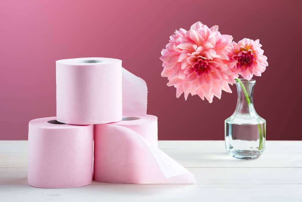 Luxury Toilet Paper