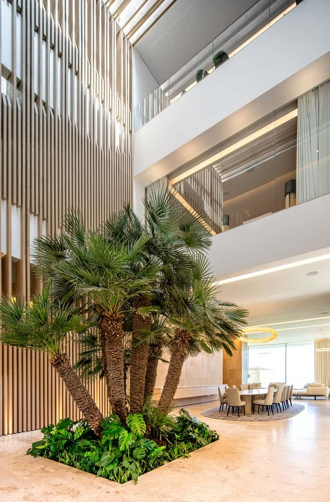 This is a full view of the dining room that has a bright beige dining table and chairs brightened by the natural lights coming in from the glass wall on the far side. These are then complemented by the indoor miniature garden of tropical trees.