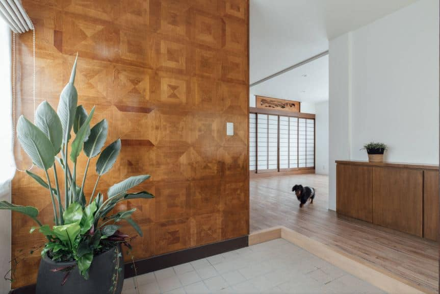 This simple Asian-style foyer has a warm and welcoming aura to it. There is a beautiful potted plant on the corner that stands out against the wooden wall that has patterns on it illuminated by the window. The rest of the home is on an elevated hardwood flooring.