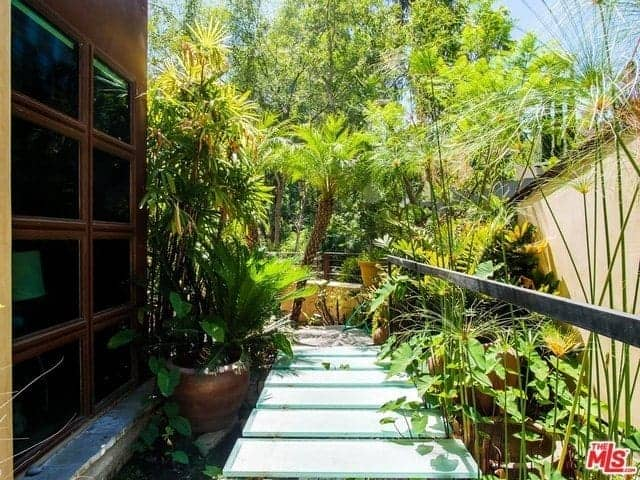 This is a view of the side of the home that has a miniature zen garden of potted plants, shrubs and medium-sized tropical trees surrounding a lovely frosted glass walkway. This scenery can be view from the window inside the house.