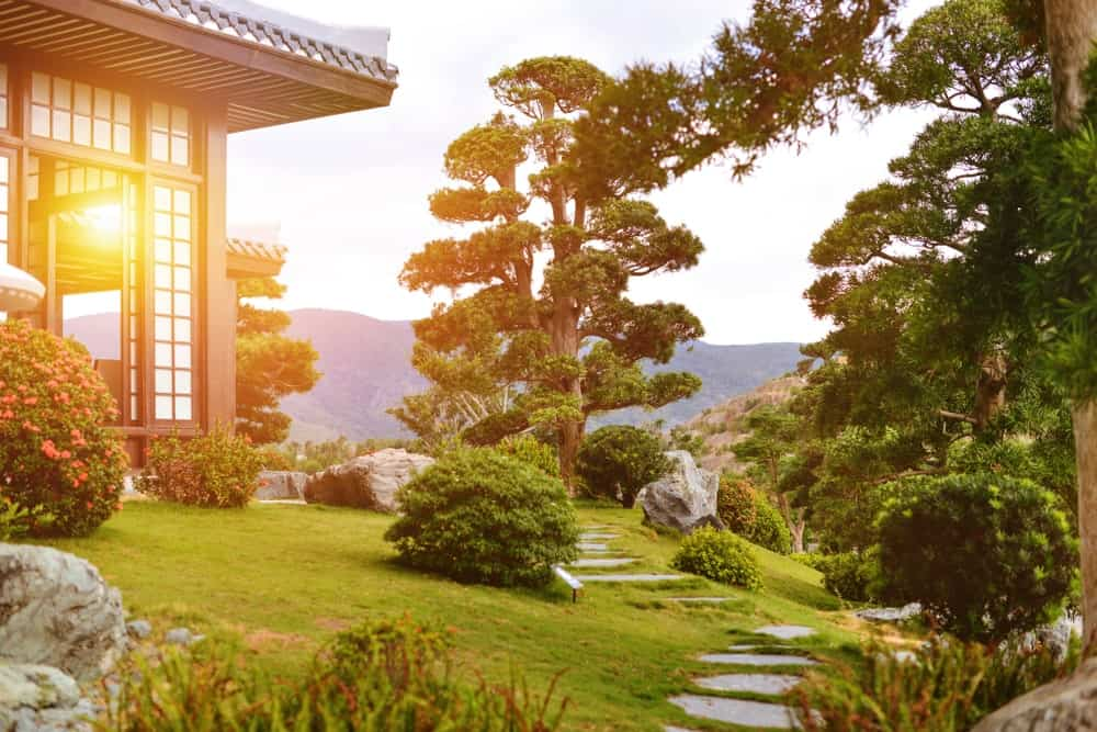 This scenery look like it came straight out of a samurai movie with its charming stone steps embedded into the grass dotted with shrubs and an elegant tall tree that looks like a huge bonsai tree standing beside the wooden home that is lit with the sunset.