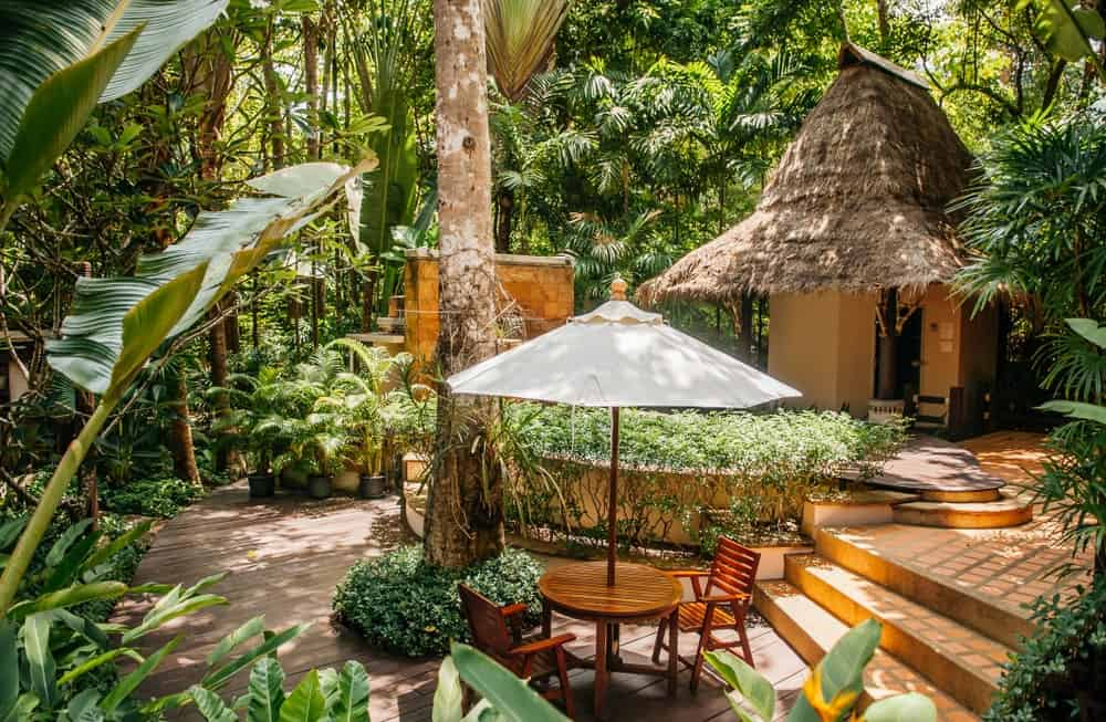 This is a lovely backyard that is surrounded by a thick foliage of trees and shrubs as well as tropical plants. These provide a green peaceful background as well as shade for the sitting area that has wooden chairs and round table on a wooden flooring leading to a terracotta walkway.