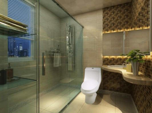 Anzzi toilet