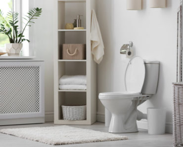 Bathroom with large rectangle mat in front of toilet