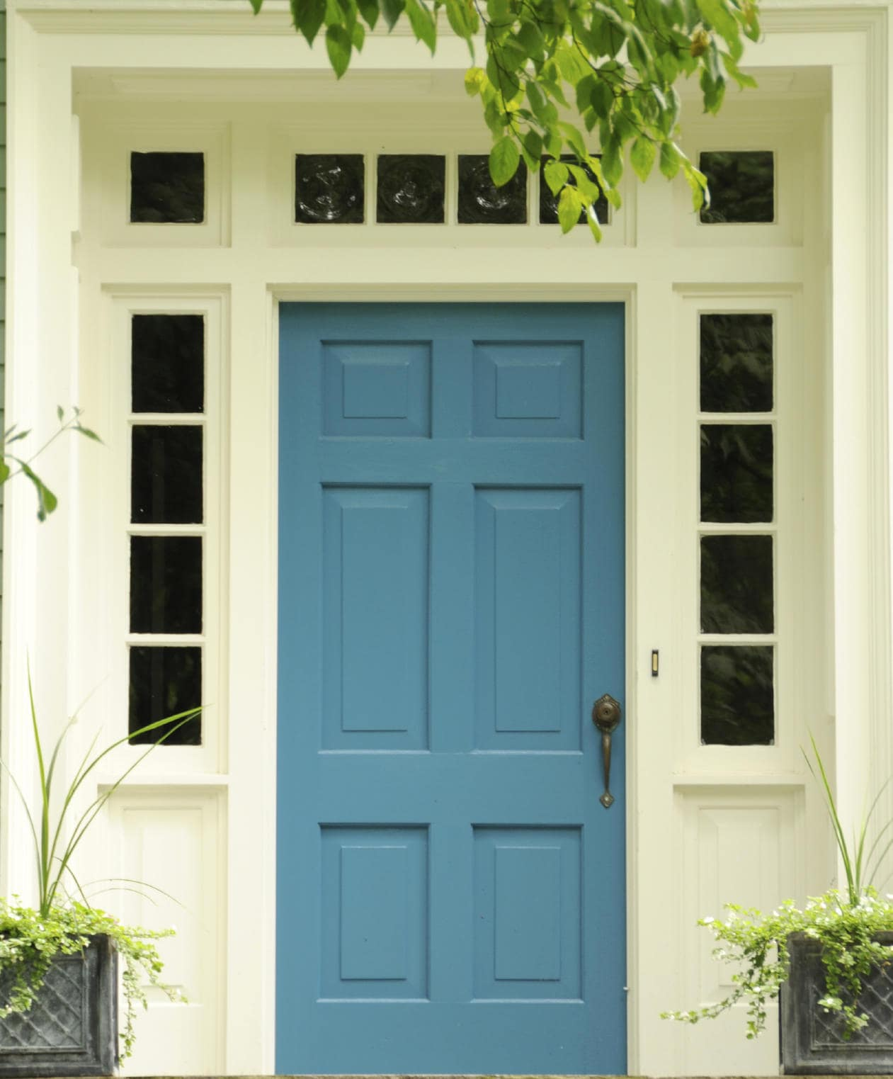 Small glass panels surround a blue front door that's fitted with a bronze handle and knob. It stands out against the white walls with hints of green plants.