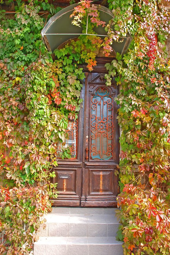 An antique double door with glass panel insets wrapped in ornate metals. The abundance of creeping plants can make or break the entire look depending on one's preference.