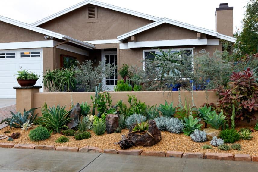 This is the view of the house from the vantage point of the sidewalk. This concrete sidewalk is separated from the property with a lining of rough terracotta blocks that border the small plot. This is filled with various cacti and succulents that stand out against the soil covered with wood shavings.