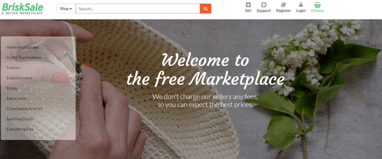 BriskSale homepage screenshot