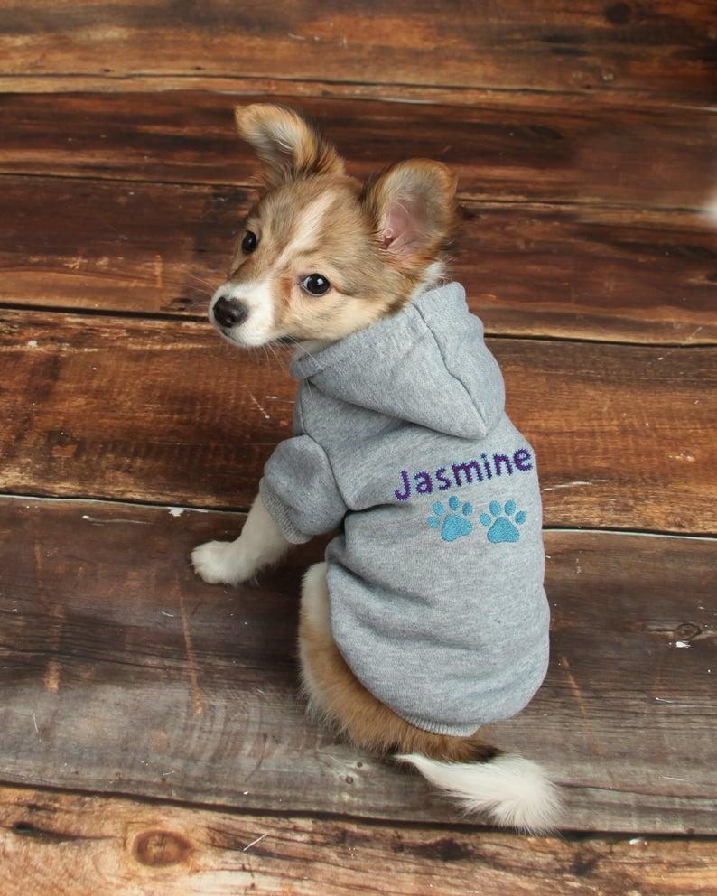 Dog clothe