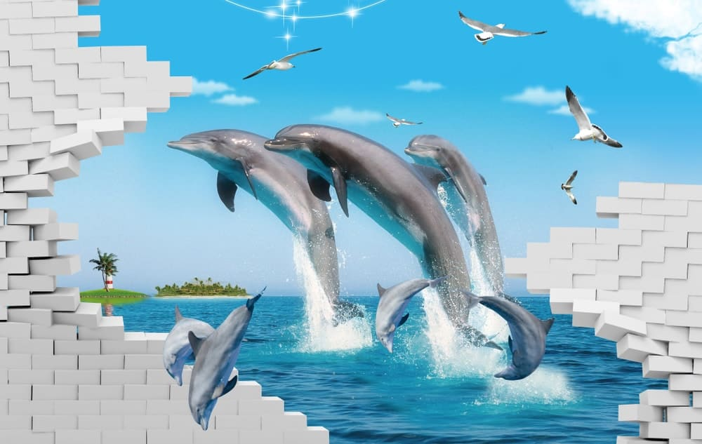 3D ocean art featuring dolphins and seagulls.
