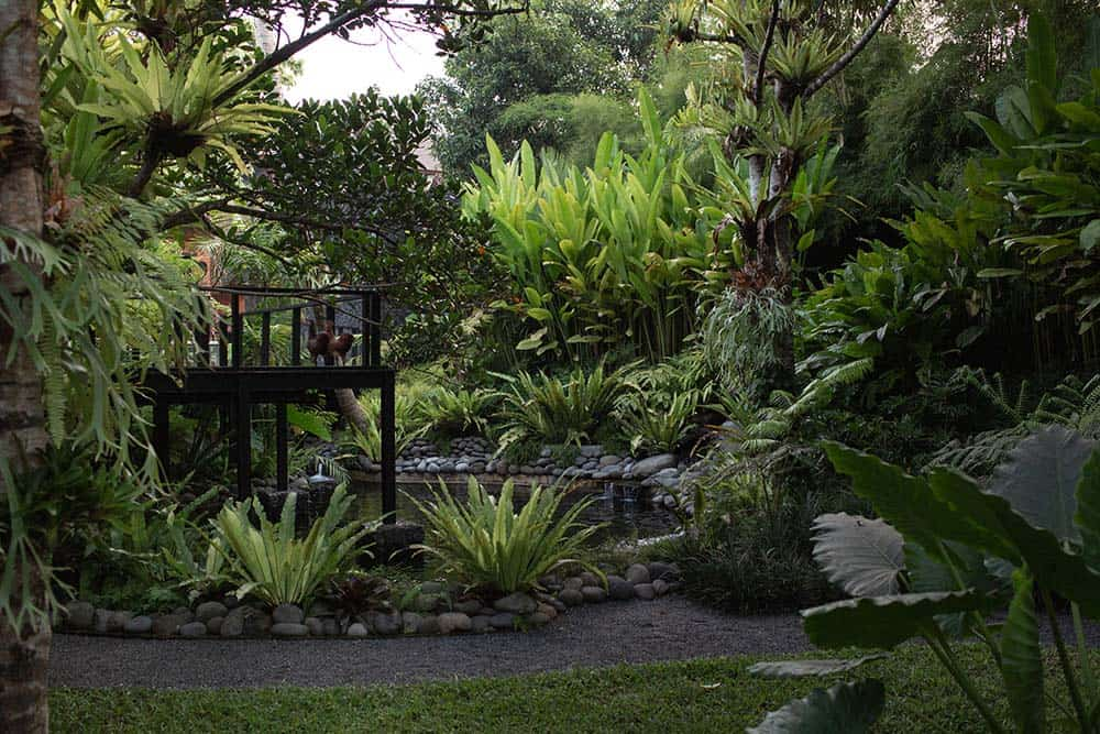 This is the lush landscaping of the front of the house with a large Zen garden filled with tropical trees and plants surrounding a large koi pond beneath the wooden deck walkway that leads to the main entrance of the house.